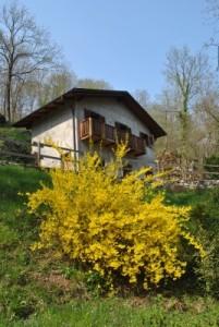 La casa delle grotte di Ara in primavera!!
